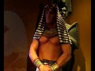 The Pharaos Curse